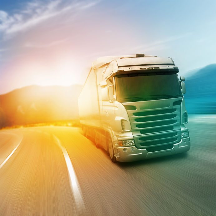 trasporto nazionale autotrasporti rosini